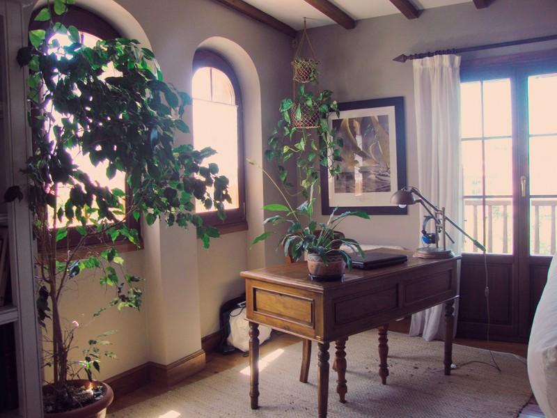 Diseño interior de estudio clásico rural