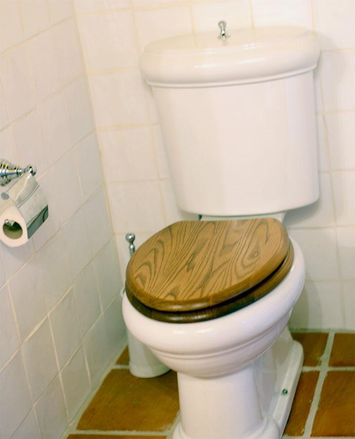 WC, estilo rústico